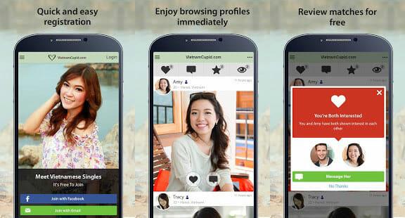 VietnameseCupid.com Site
